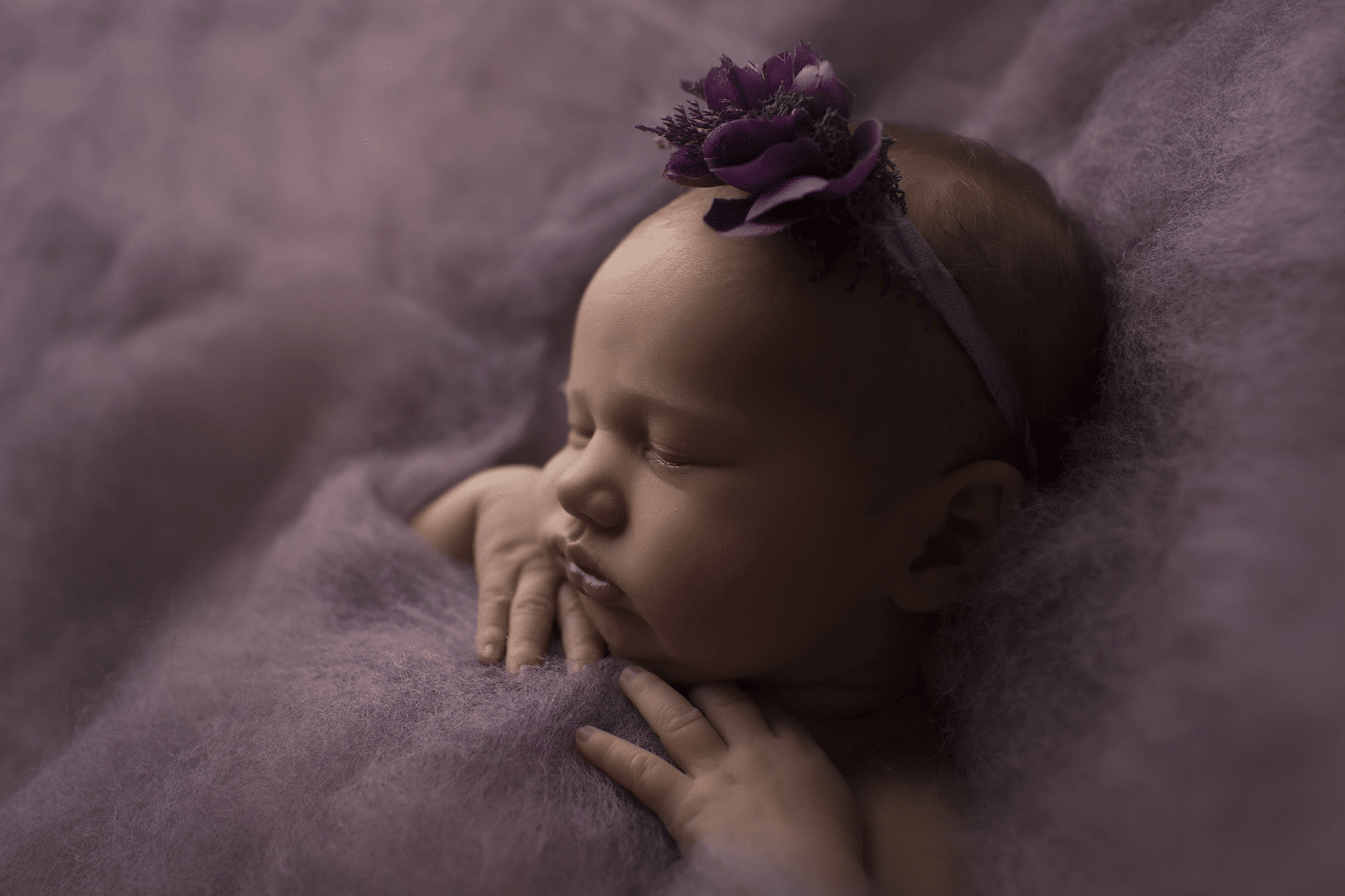 profile-photo-of-newborn-ba