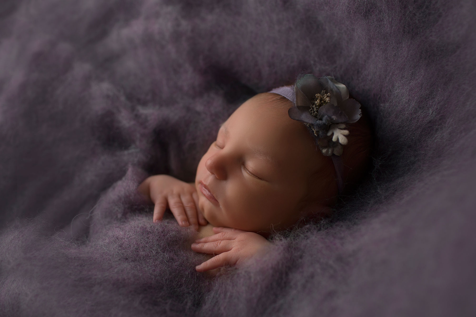 profile-photo-of-newborn-girl-on-purple-fluff