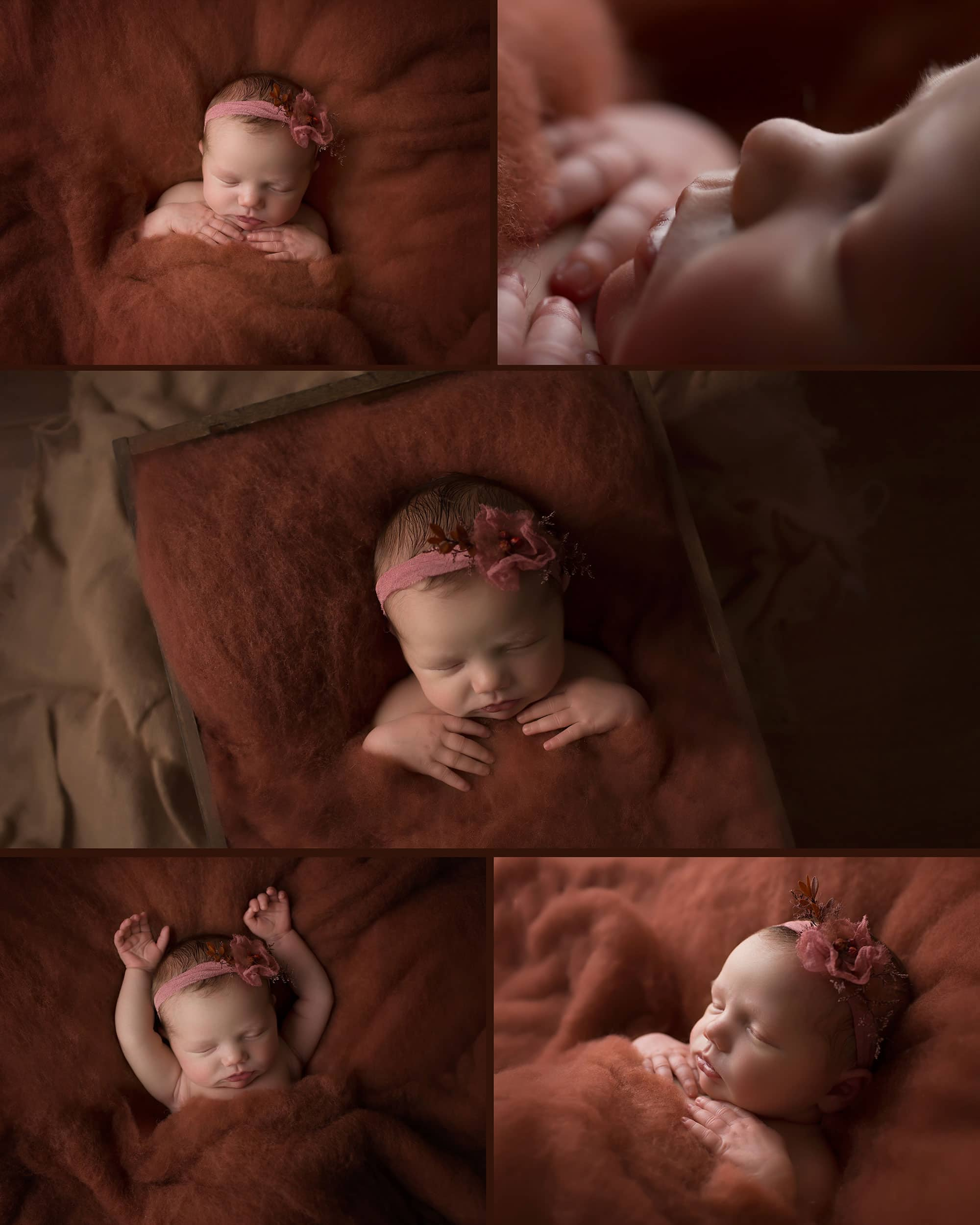 collage of newborn girl on spiceberry fluff