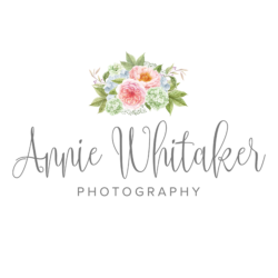 Custom Newborn Photography in New Orleans and Mandeville, LA by Annie Whitaker Photography