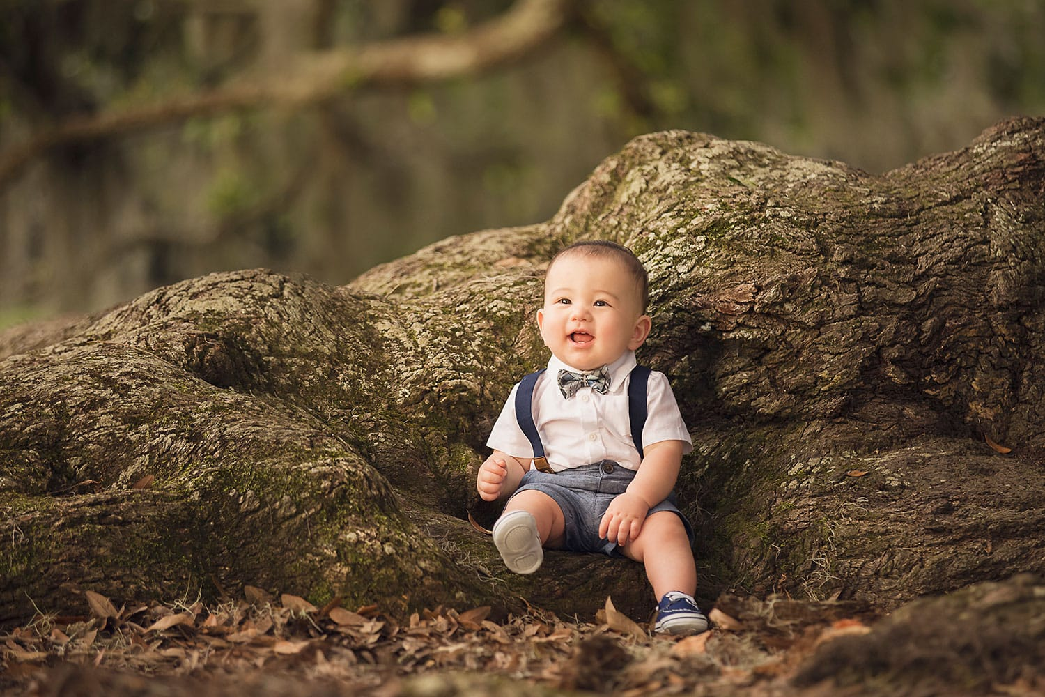 Baby boy sitting on tree roots by Annie Whitaker Photography