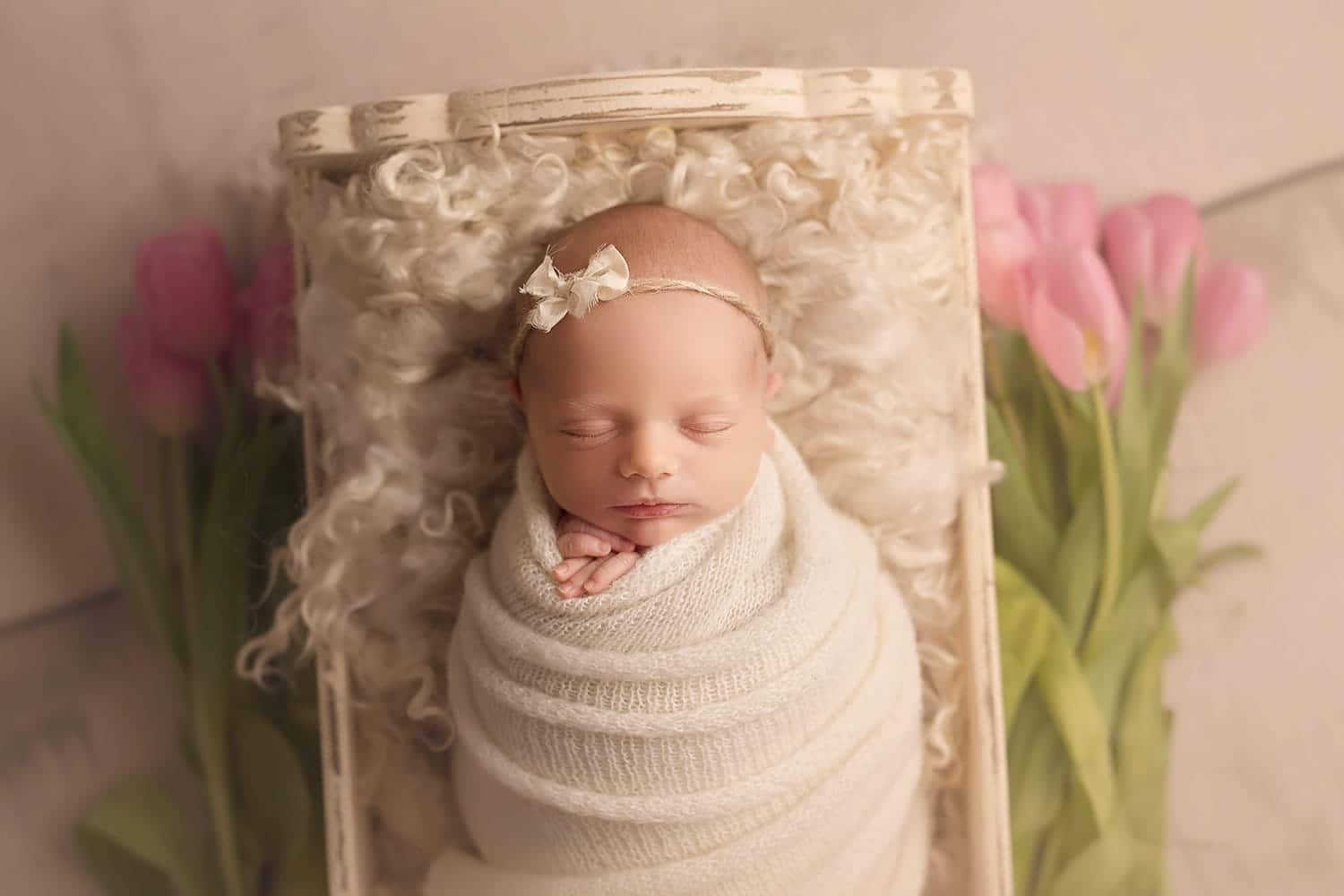 Newborn baby in small bed with tulips by Annie Whitaker Photography