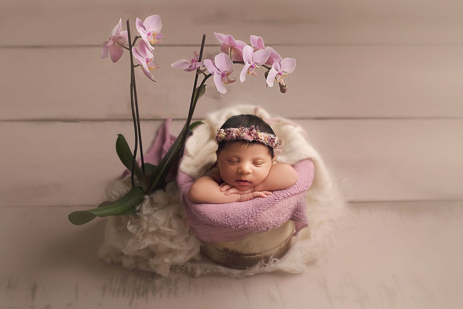 baby girl in bucket with orchid by Annie Whitaker Photography