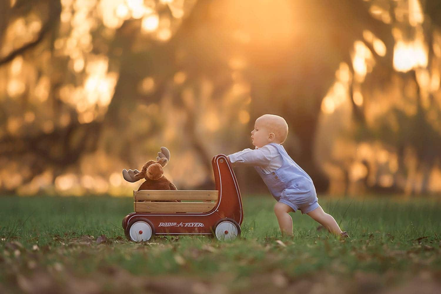 Boy pushing red wagon at sunset by Annie Whitaker Photography