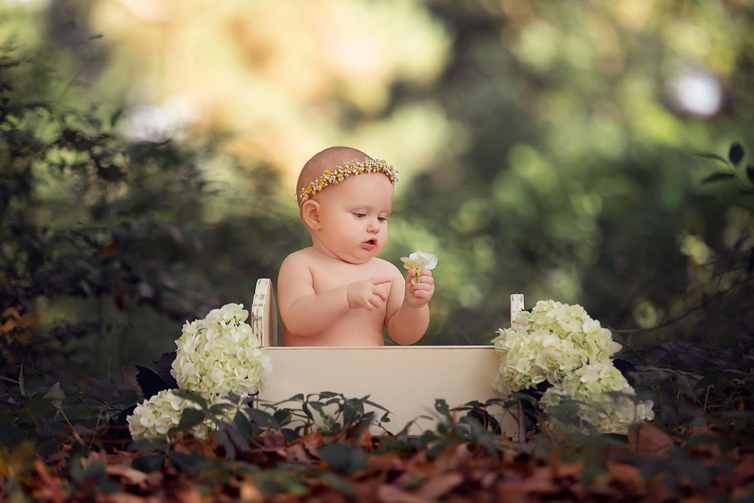 baby girl in tiny baby bed with flowers by Annie Whitaker Photographer