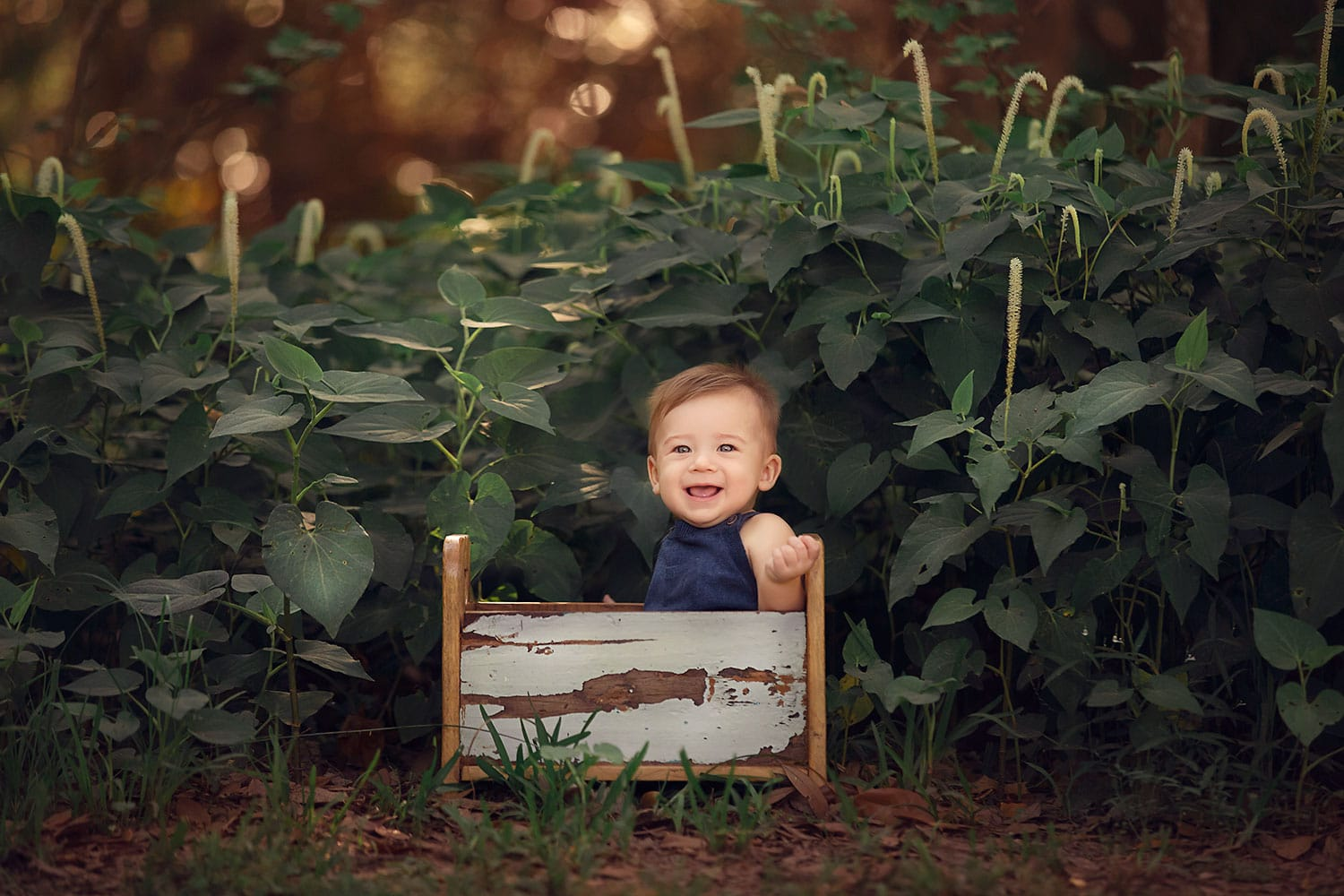 6 month old baby boy in tiny bed by annie Whitaker Photography