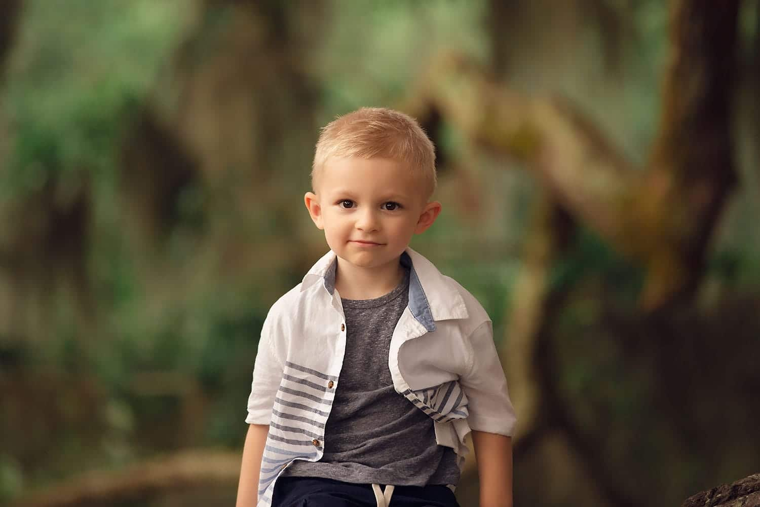 4 year old boy on tree by Annie Whitaker Photography