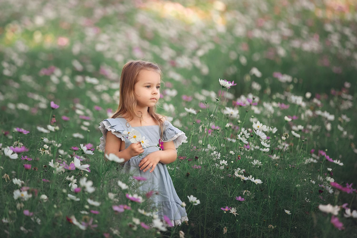 3 year old in New Orleans city park wild flowers by Annie Whitaker Photography