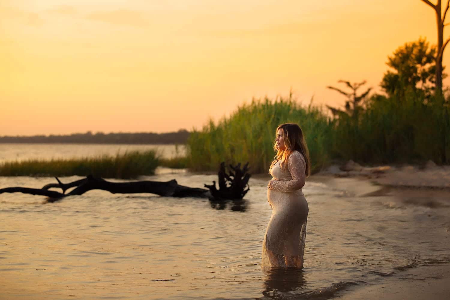 Maternity session at sunset at Fontainebleau State Park in Mandeville LA
