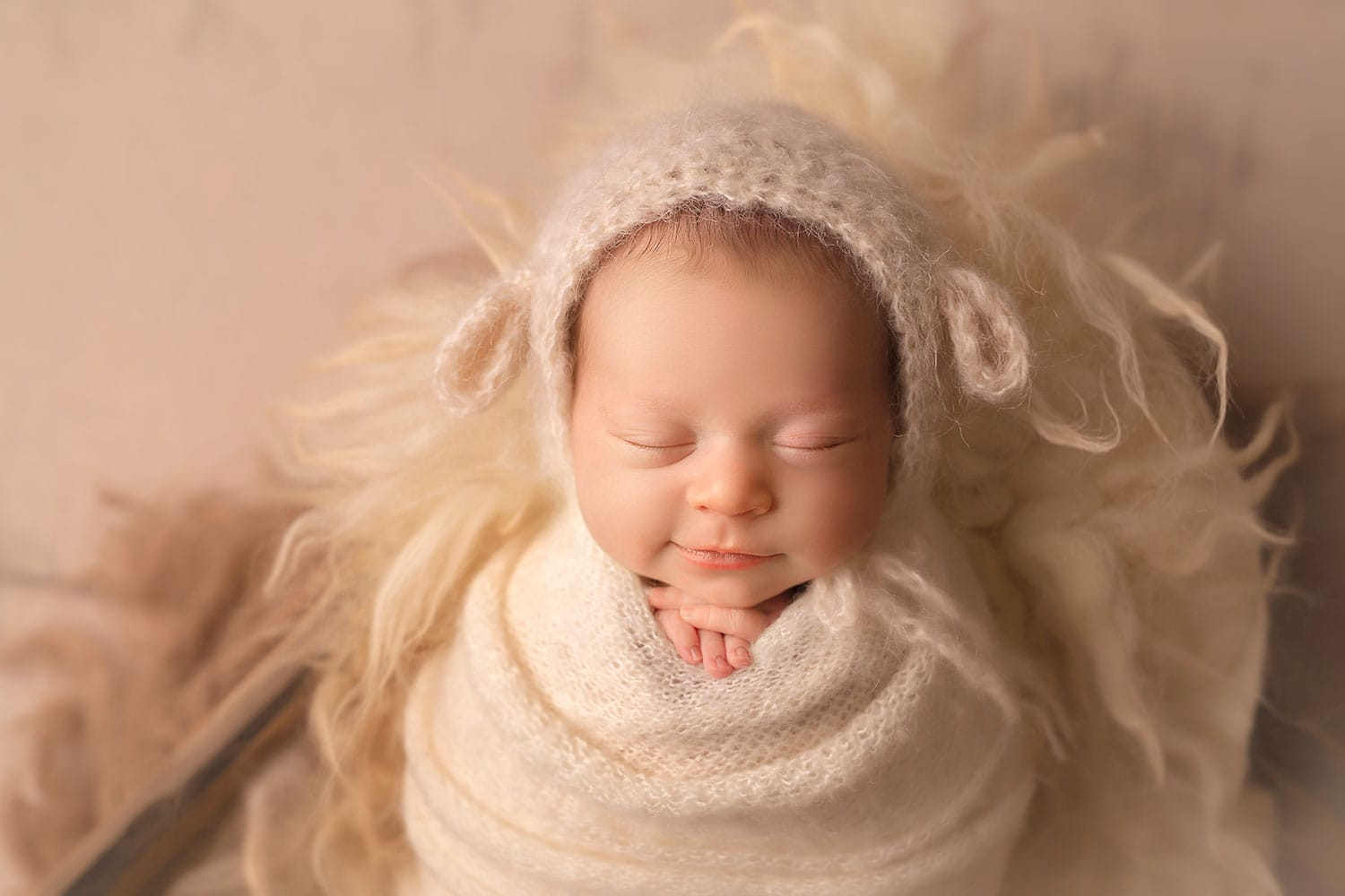 sweet baby lamb by Annie Whitaker Photography