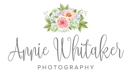 Fine Art Newborn Photography in New Orleans and Mandeville, LA by Annie Whitaker Photography
