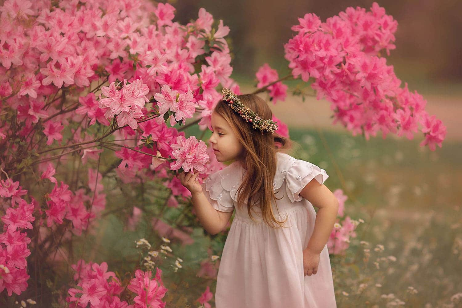 Stunning photo of four year old girl smelling flowers.