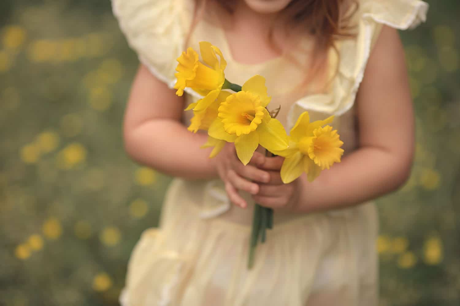 Beautiful photo of little girl holding daffodil's