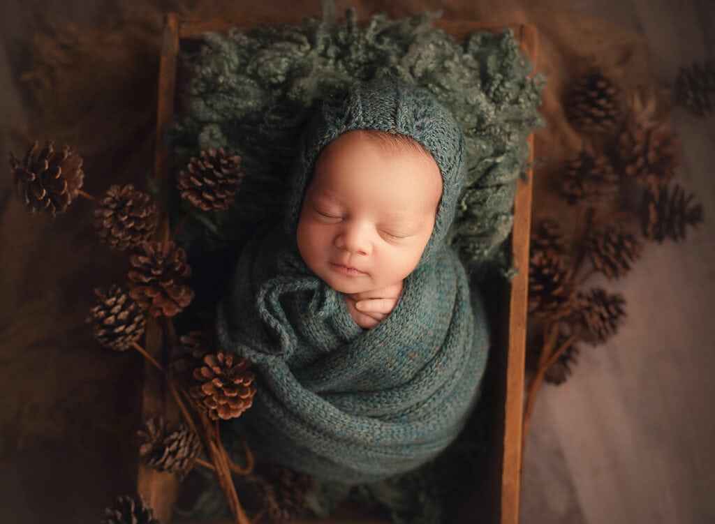 newborn in fall set up with pinecones