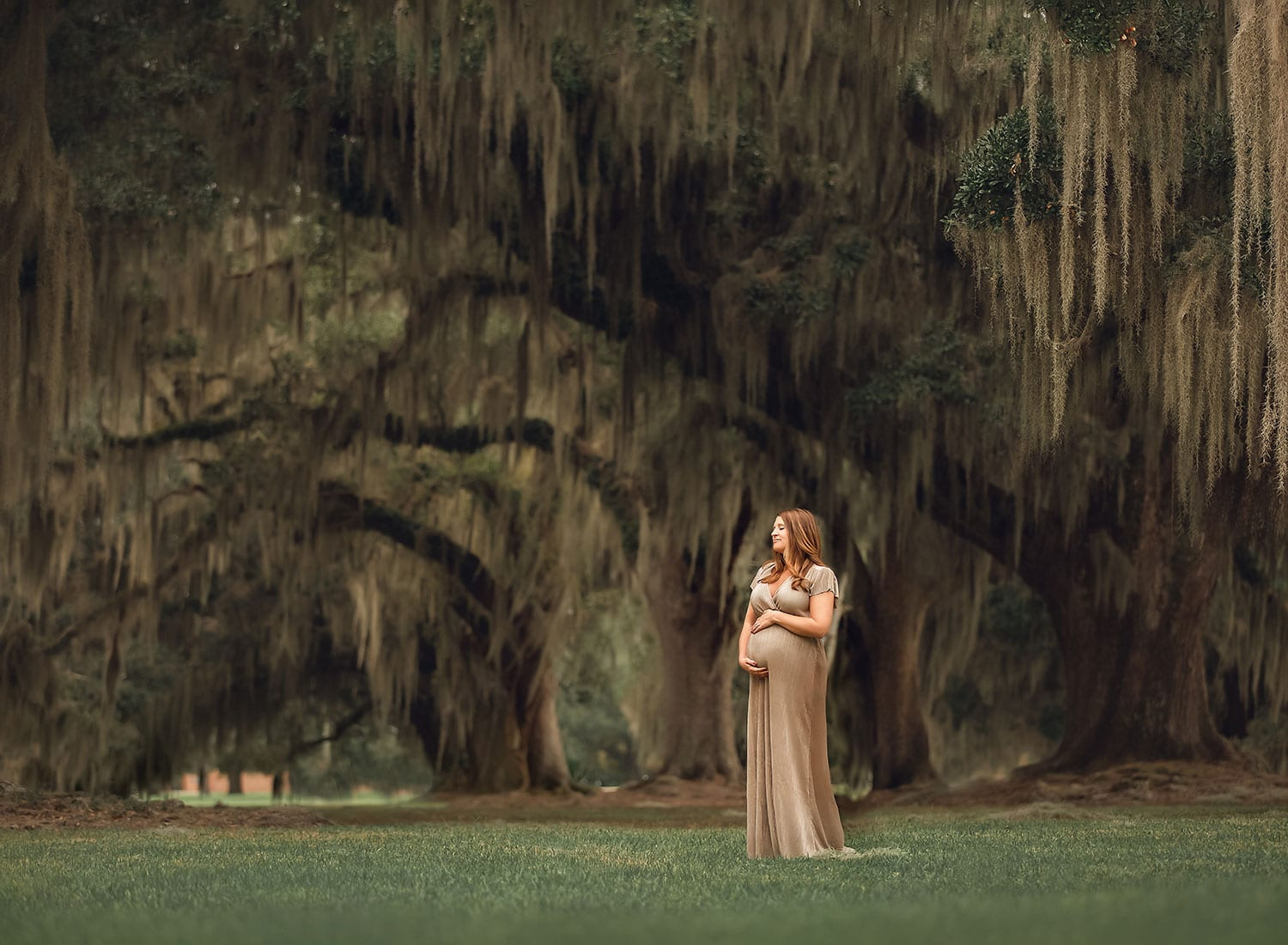 Stunning maternity session under the large oak trees in Louisiana