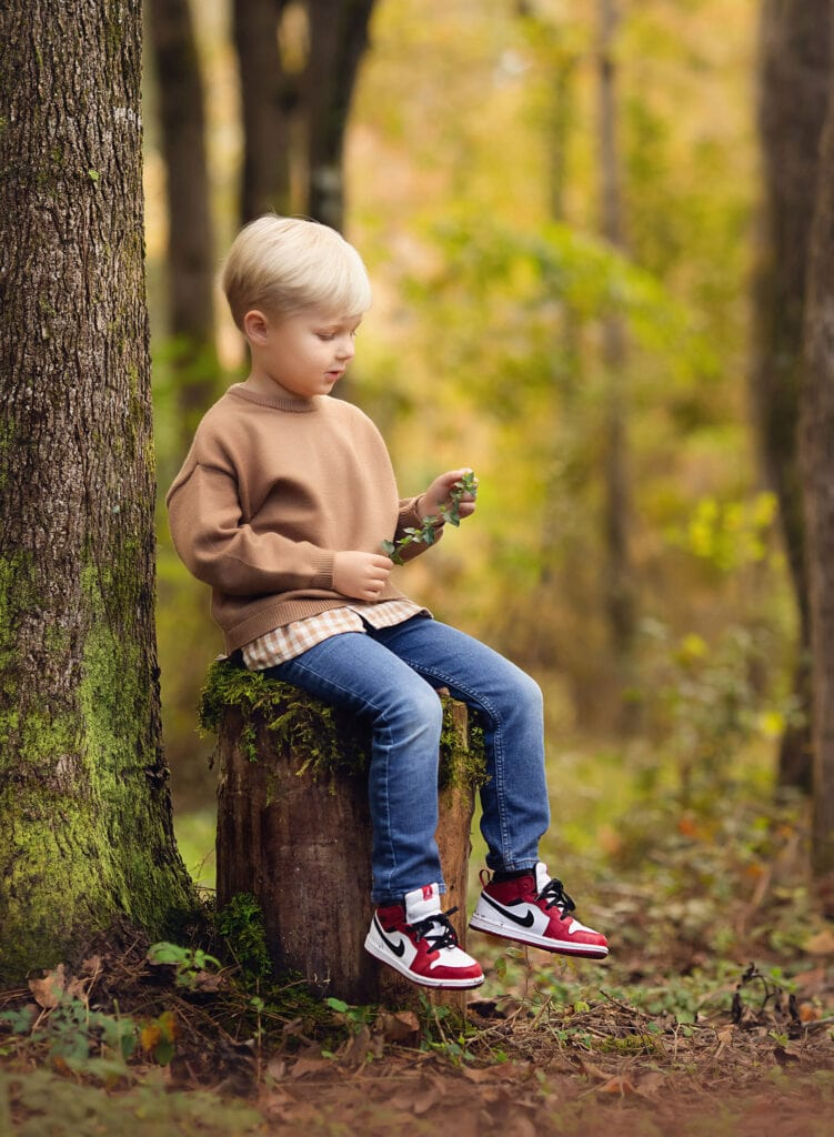 Four year old sitting on moss covered stump
