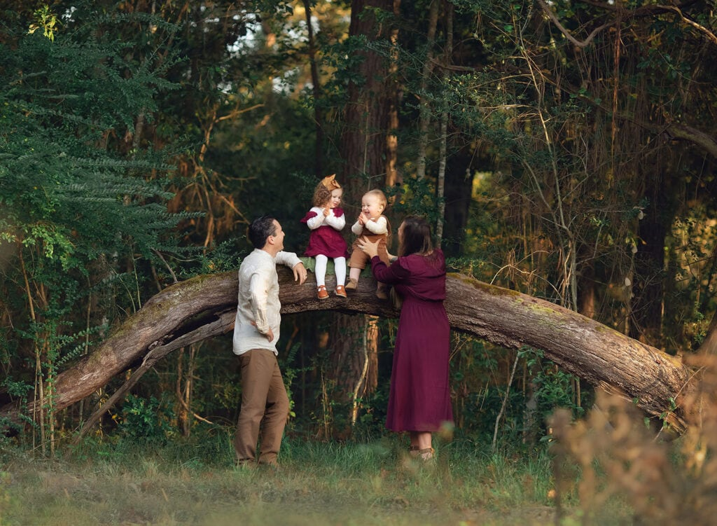 stunning photograph of family of four with children sitting on oak tree branch